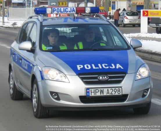 Policja Gniezno: Potrącenie podczas łapania psa